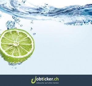 <span>Jobticker.ch</span><i>→</i>